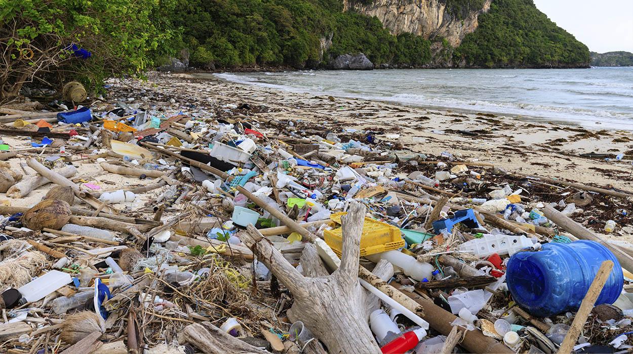 Plastik Atıkların Çevresel Etkileri